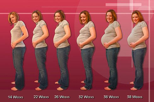 Положение плода по неделям беременности