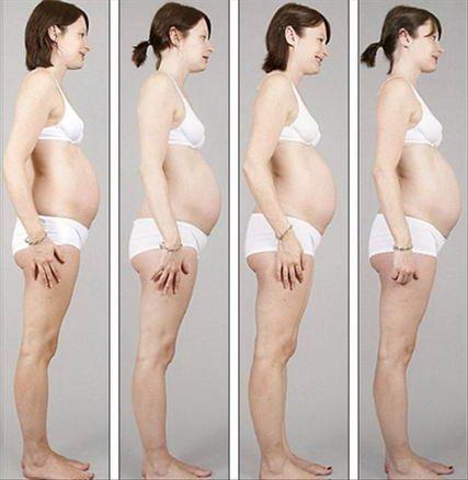 Тип живота у беременных 50